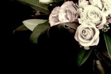 flower035