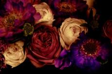 flower042