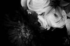 flower045