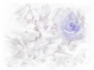 青い薔薇と羽根