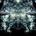 デカルコマニーの森(4パターン)