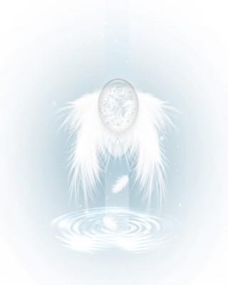 翼の生えた透明な卵の壁紙(5パターン)