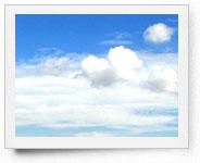 peper-curl-sky015