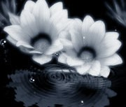 repeat-flower015_3