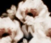 repeat-flower018_2