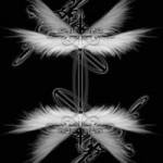 十字と羽根(4パターン)
