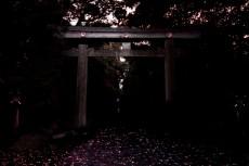 scenery014