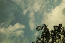 sky021