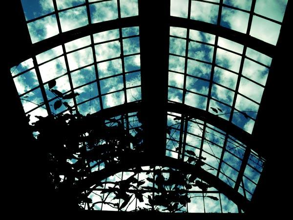 温室から見上げる空
