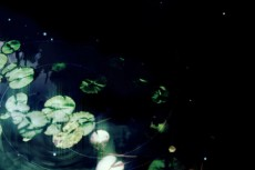 norepeat-waterside009_3