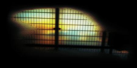 水溜りに映る夕暮れの空