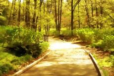 outdoor-scenery-005-2