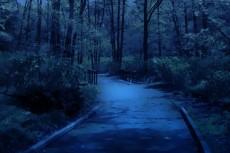 outdoor-scenery-005-3