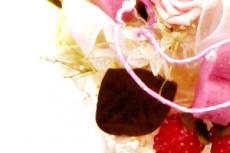 flower268