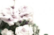 flower269
