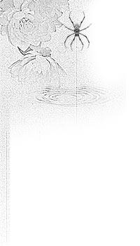 睡蓮と蜘蛛(8パターン)