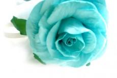 flower284