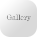 button009_gray_gallery