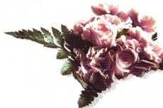 薔薇のリースの写真素材