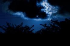 空と木と電線の写真素材
