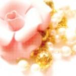薔薇のブローチと真珠のネックレス