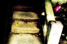 石段の傍らに佇む稲荷(いなり)