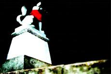 暗闇を見つめる稲荷(いなり)