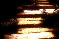陽のあたる石段