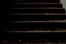 落ち葉が積もる階段の写真素材