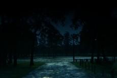 夜の公園の写真素材