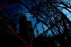 鬱蒼とした木々とフェンス越しのビル