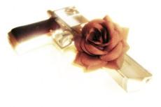 自動拳銃と赤い薔薇