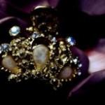 王冠と花びらの写真素材