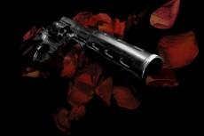 赤い花びらに包まれる銃