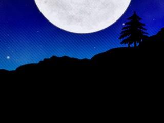 満月と一本木(12パターン)