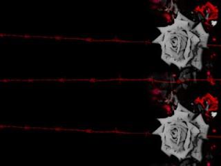 有刺鉄線と薔薇(4パターン)