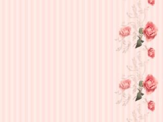 クラシカルな薔薇とストライプ(5パターン)