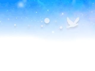 星空と鳥のシルエット(4パターン)
