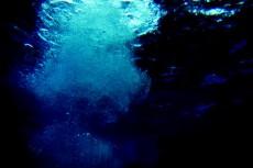 水面へ立ち上る水泡