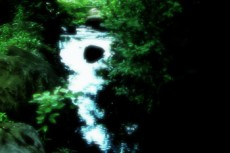緑に囲まれた渓流
