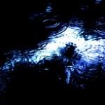 雨の波紋の写真素材
