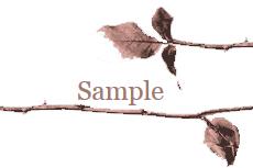 棘のある枝(10パターン)
