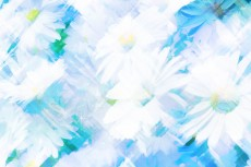 cover-flower007-2