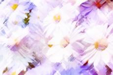cover-flower007-3