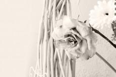 cover_flower006-3