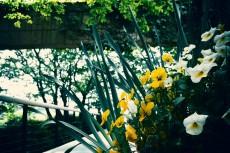 flower396