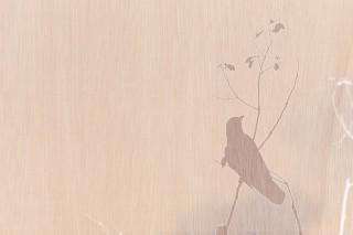 【高解像度】木目調のナチュラルなカラスのシルエット(3パターン)