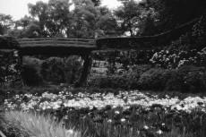 scenery321-2