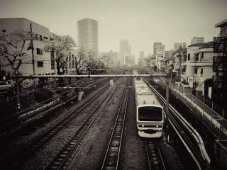 【高解像度】東中野駅西口前の桜並木
