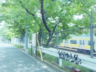 【高解像度】晴れた線路沿いの風景